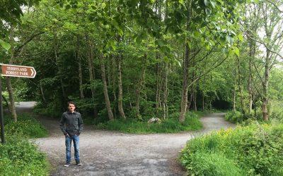 Terryland Forest Park