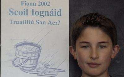 Cathair na Gaillimhe 2002, Truailliú San Aer?
