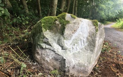 Heritage Trails in Terryland Forest Park