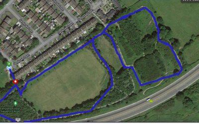 Terryland Forest Park Blue Route