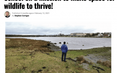 School on a Mission to Rewild Galway City