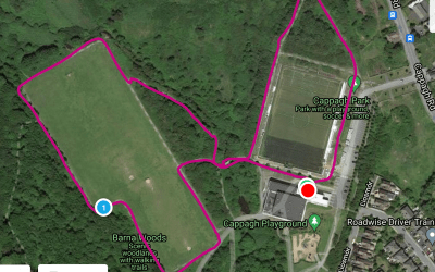 Cappagh Park Loop 1 – 1.31km